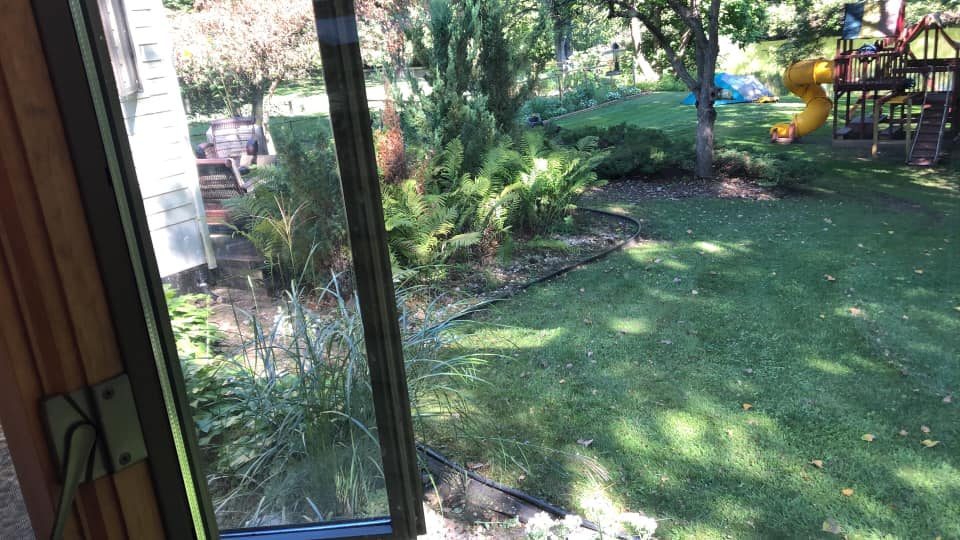 Photo taken from my bedroom window. Spa to go along the deck where the rocks/fern s are
