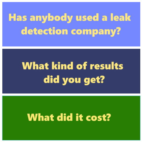 Swimming Pool : Has anybody used a leak detection company? What kind of results did you get? What did it cost?